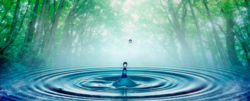 Aguas Purificadas Río Claro, vida líquida que nunca debe faltar en el hogar